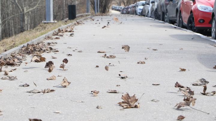 Экстренное предупреждение: ветер разбушевался в Нижнем Новгороде