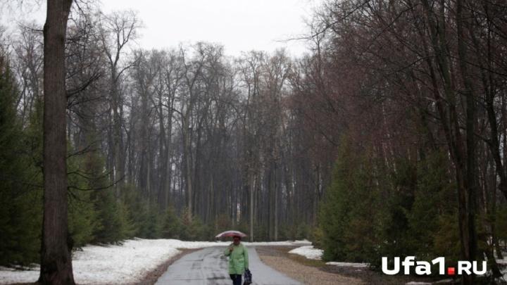 Снег с дождём: синоптики рассказали о погоде в Башкирии на выходные