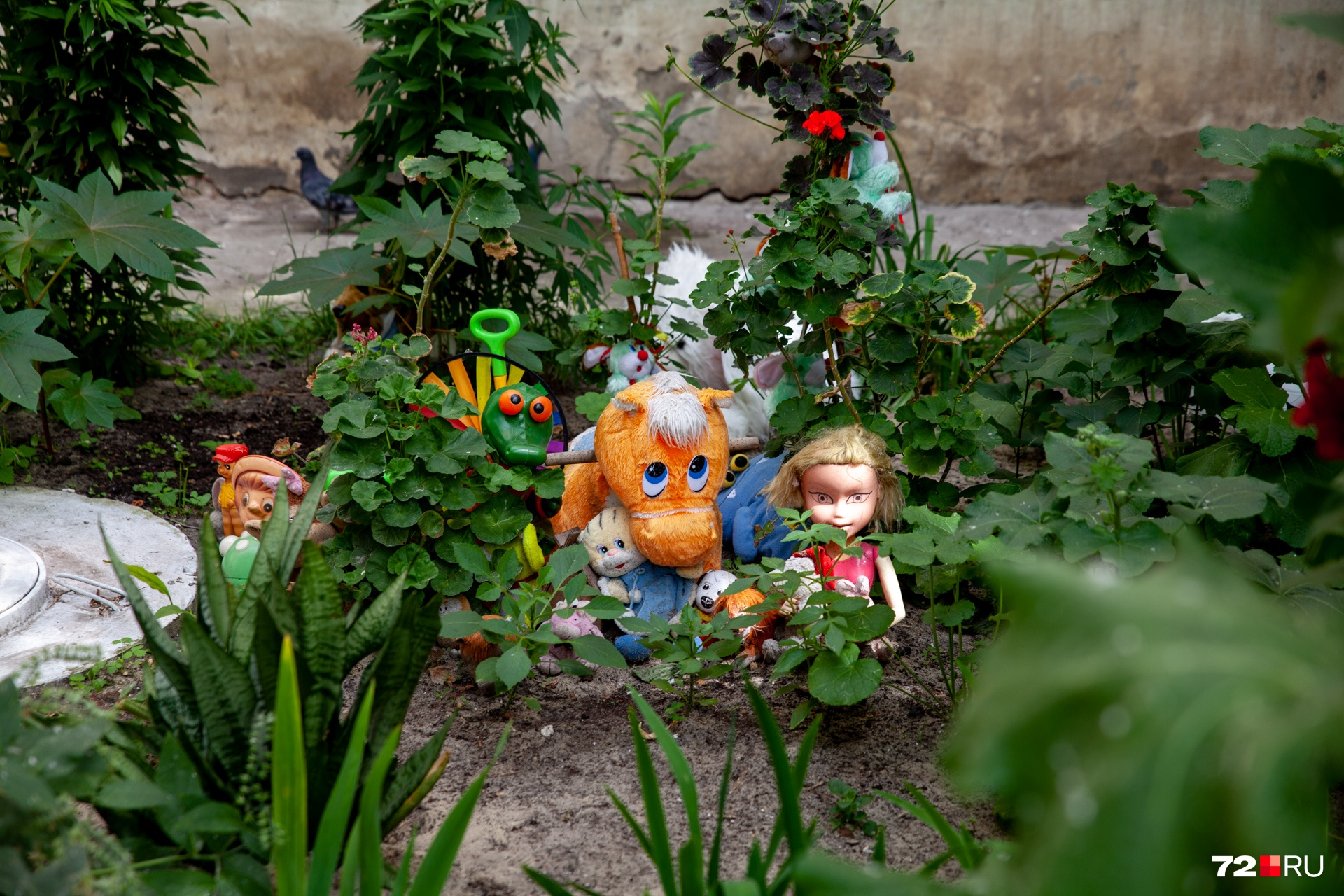 Если детям не понравятся подаренные игрушки, ребята смогут украсить ими двор
