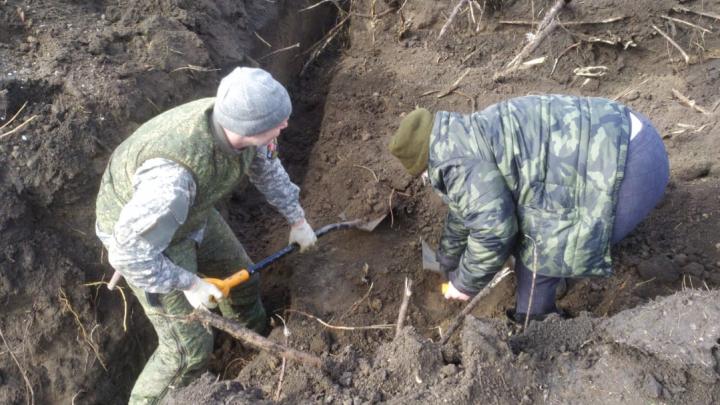 В парке в Ростовской области нашли останки людей. Поисковики рассказали, кому они могут принадлежать