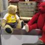 Мишки Тедди, кроманьонцы и женское царство сеньоры Альбы: афиша на выходные и неделю в Перми