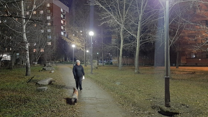 На аллее около педуниверситета, где нашли тело студентки, спешно сделали освещение