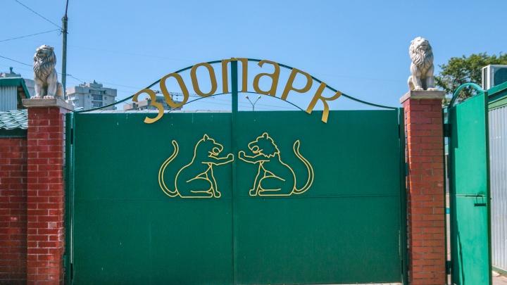 В Самарском зоопарке устроят квест для детей и взрослых
