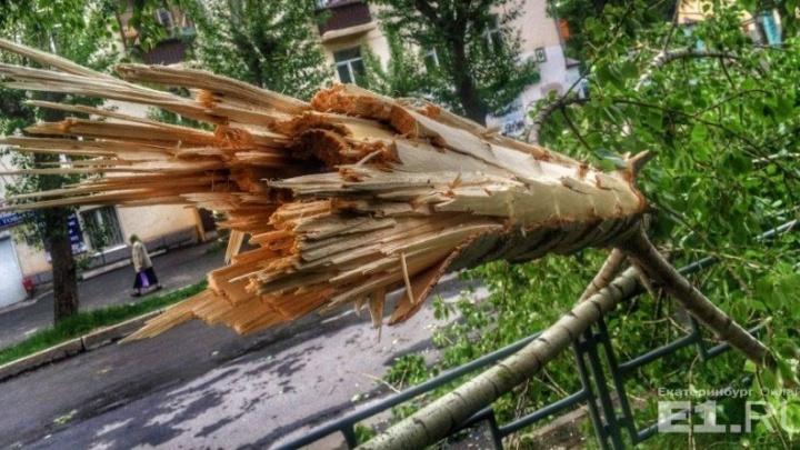 """""""Пострадали 9 человек, 4 госпитализированы"""": спасатели подводят итоги прошедшего урагана"""
