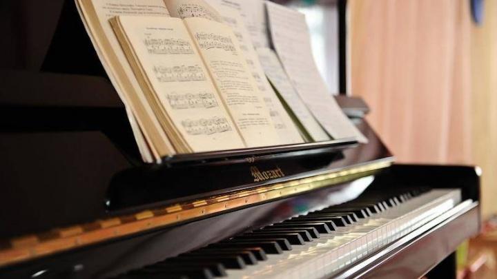 На новые пианино для школ искусств в Ростовской области потратят 30 миллионов рублей