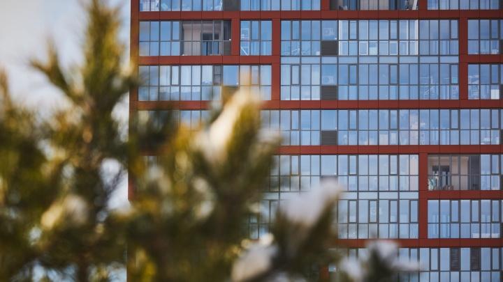 Где покупают квартиры новосибирские риелторы