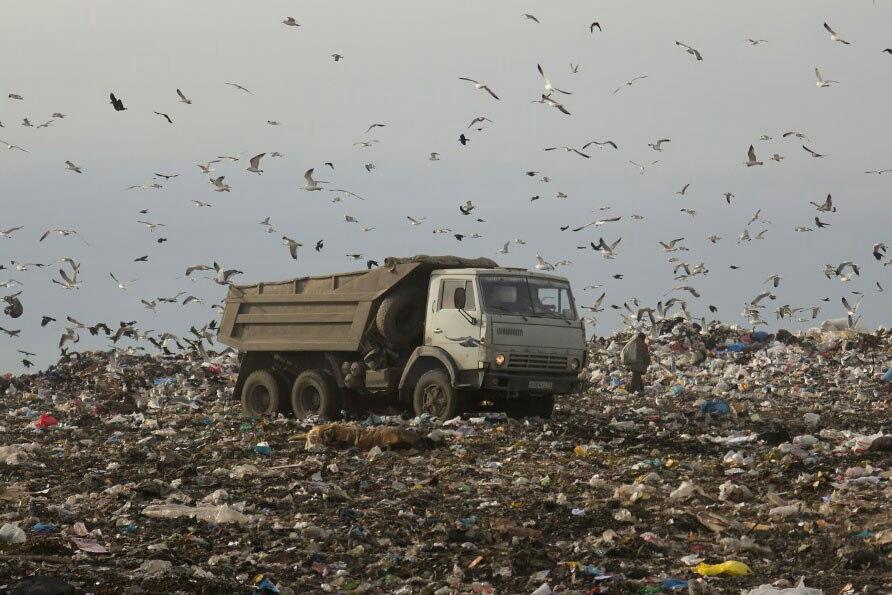 В Челябинске мусор не будут сортировать, но будут строить мусороперегрузочные станции