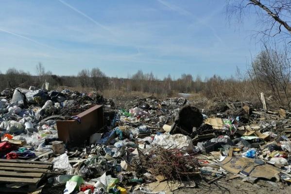 В прошлом году на территории Ярославской области нашли более 1200 свалок