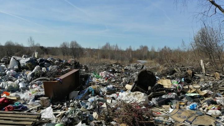 В Ярославле хотят разгрести гигантское мусорное поле