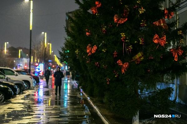Из-за высокой температуры зимой в Сибири пошел дождь
