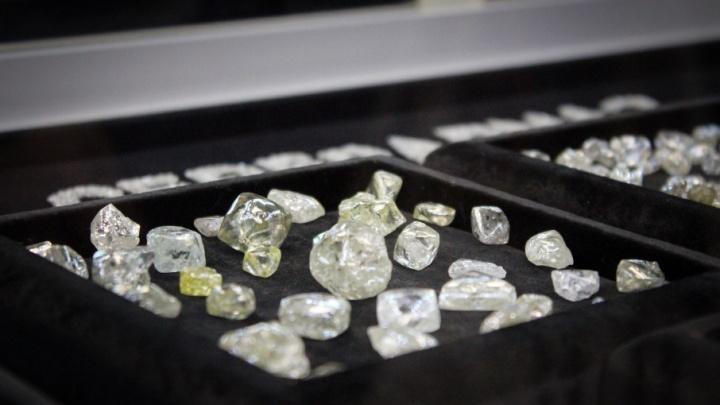 «Женщины просят, мы готовы»: в Поморье продолжат масштабный проект по добыче алмазов до 2043 года