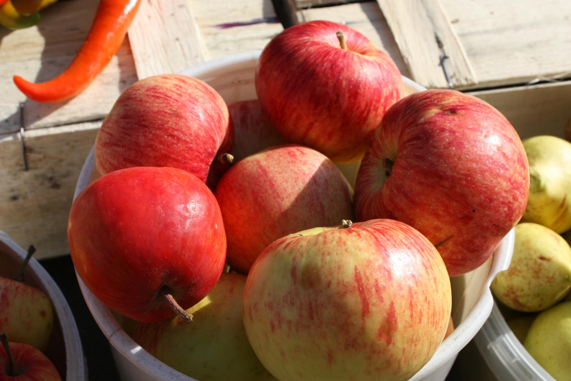 — Это сейчас, сезонное яблоко, боровинка, очень вкусные, только с дачи, — рекомендует покупателям свой урожай пенсионерка