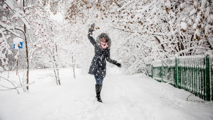 Прохлада с ветерком: воздух из Казахстана несёт в Новосибирск снегопады и метели