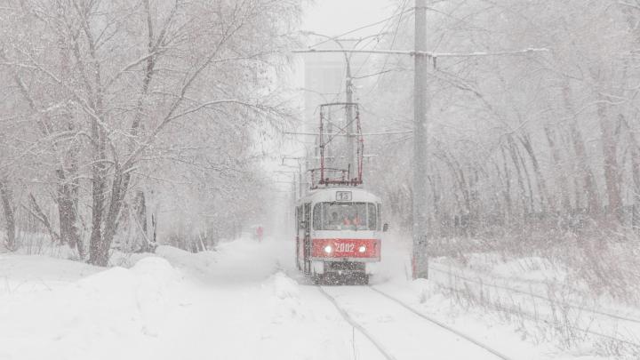 Горожане посоветовали чиновникам забрать у Москвы б/у трамвайные вагоны