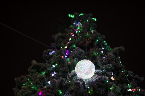 Главную ёлку Архангельска откроют 22 декабря