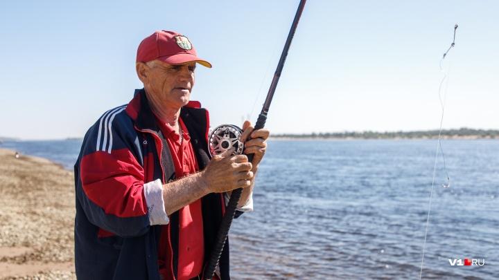 «Девушка со вторым разрядом составит конкуренцию»: рыбаки готовятся к битве на чемпионате Волгограда