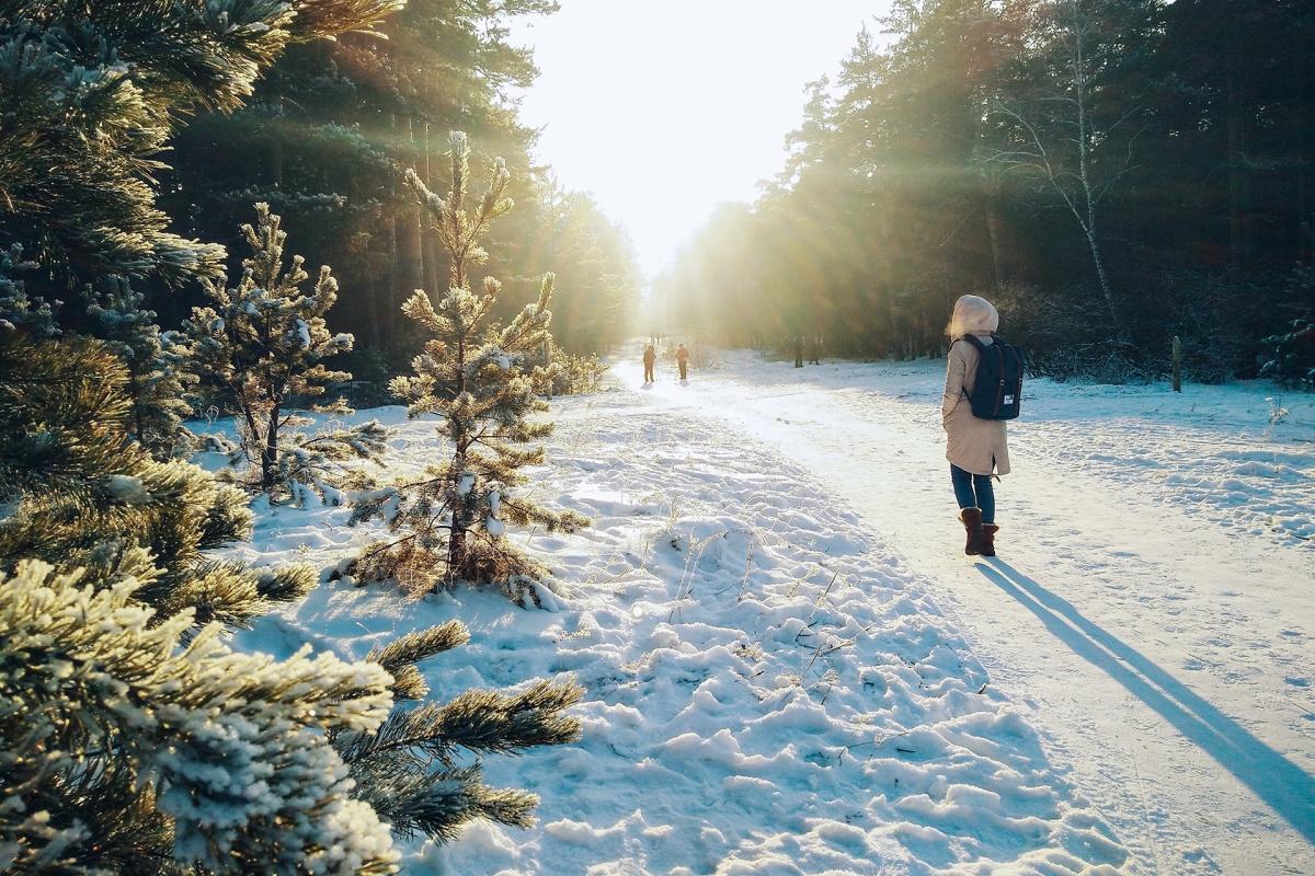 Не планируйте долгие прогулки, если за бортом суровые январские морозы