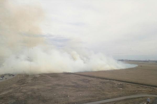От горящей травы в небо поднялся огромный столб дыма