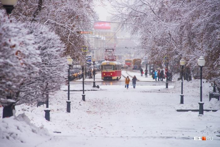 После сильных морозов первой половины февраля на Урале почувствовалось дыхание весны
