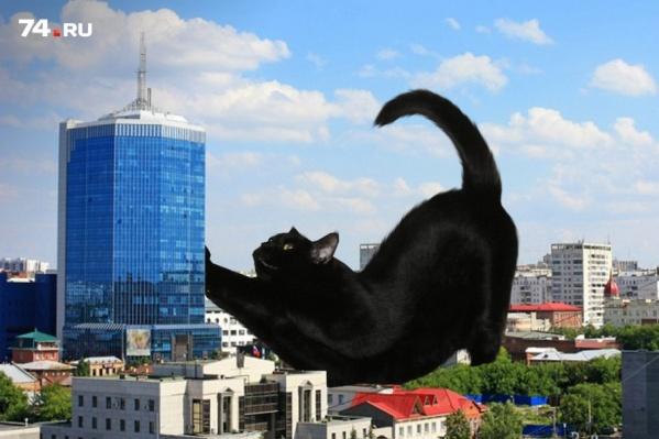 Котов-гигантов художник называет Котзиллами