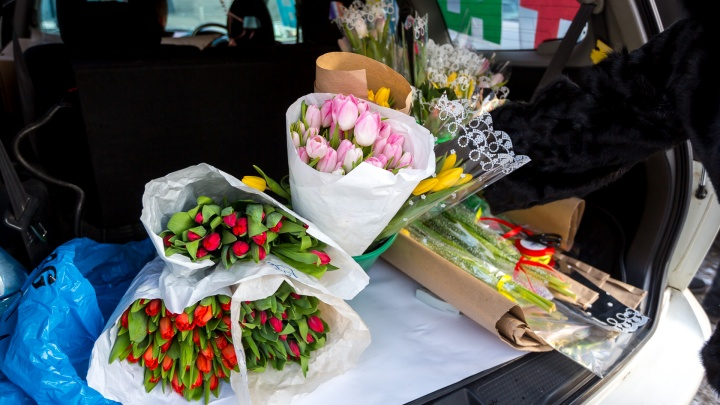 Продавцы тюльпанов на 8 Марта уже начали принимать заказы по цене от 24 рублей за цветок
