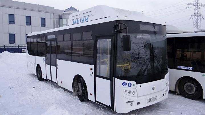 Альтернатива маршруткам: муниципальный перевозчик начал тестировать компактный автобус