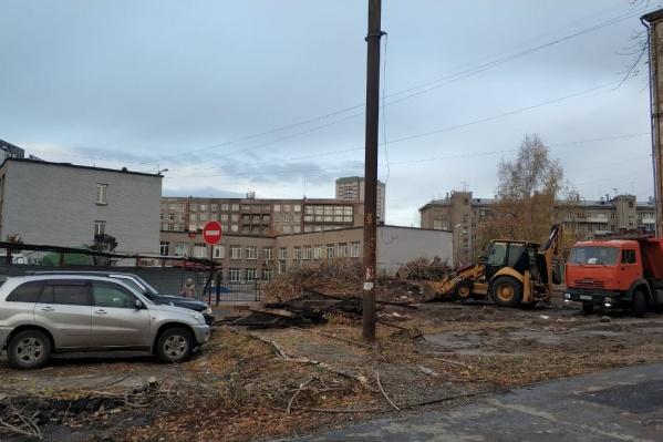 Деревья спилили рядом с территорией лицея «Надежда Сибири»