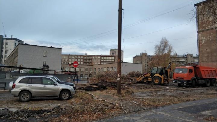 У лицея в центре Новосибирска спилили деревья
