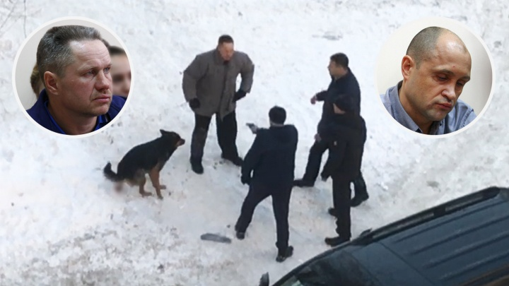 Экс-главу Октябрьского района признали виновным в стрельбе по собакам