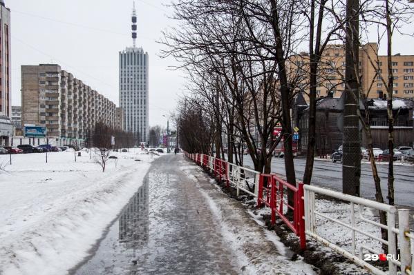 Общественники и дизайнеры переживают, что в городе становится все меньше деревьев