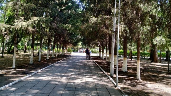 В Кургане ЦПКиО будет ремонтировать челябинская фирма