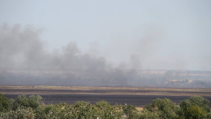 В огне погибли зайчата: рассказываем о последствиях пожара в Азовском районе