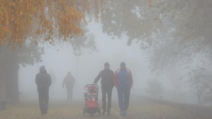 «Последняя неделя ноября»: Волгоградскую область ждут туманы, мокрый снег и гололёд при-8 ºС