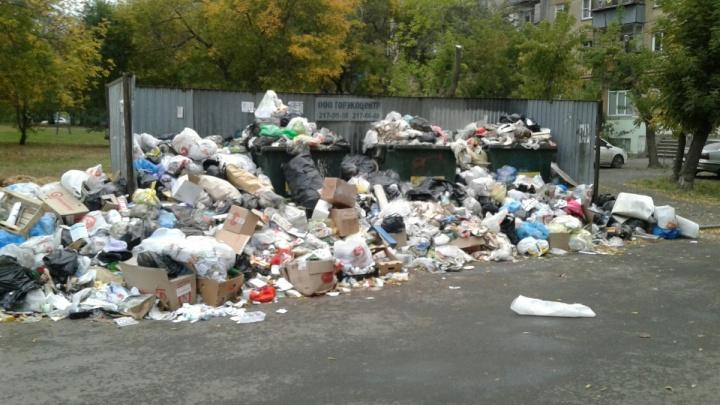 «Кому полмиллиарда?»: в Челябинске объявили конкурс на перевозку мусора