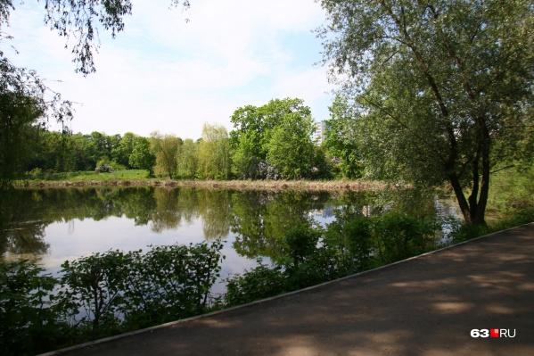 Озеро — одна из фишек Ботанического сада