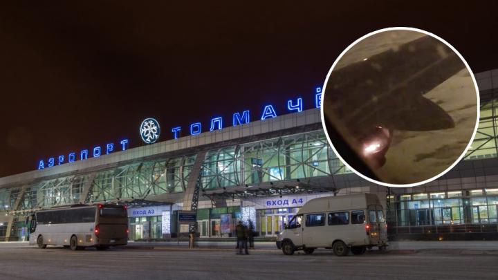 Пассажиры сняли на видео, как в Толмачёво у самолета загорелся двигатель — публикуем кадры