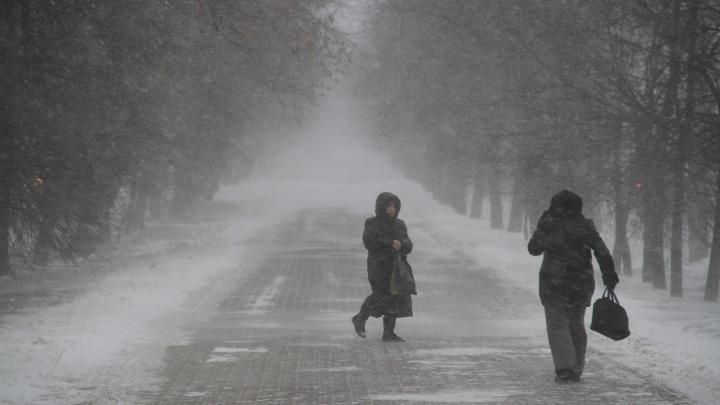Вырывает деревья с корнем: в МЧС предупреждают жителей Башкирии о сильном шторме