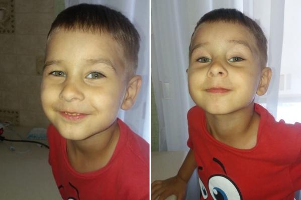 Коля Бархатов потерялся, пока его родители собирали ягоды