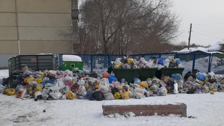 Бизнесмен честно признался, почему Новосибирск тонет в мусоре— публикуем 7 причин, по его мнению