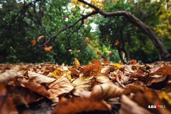 Октябрь обещает быть теплым и туманным