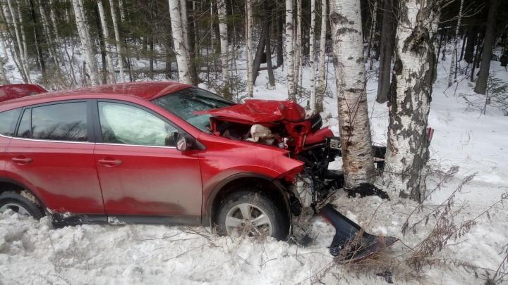 Уральские гаишники призвали отказаться от сервисов по поиску водителей для дальних поездок: причина