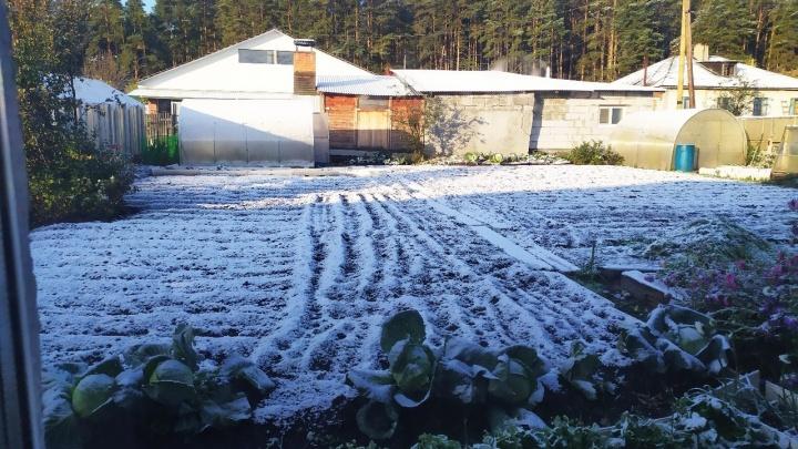 На Урал пришла зима: подборка снежных фотографий от читателей E1.RU