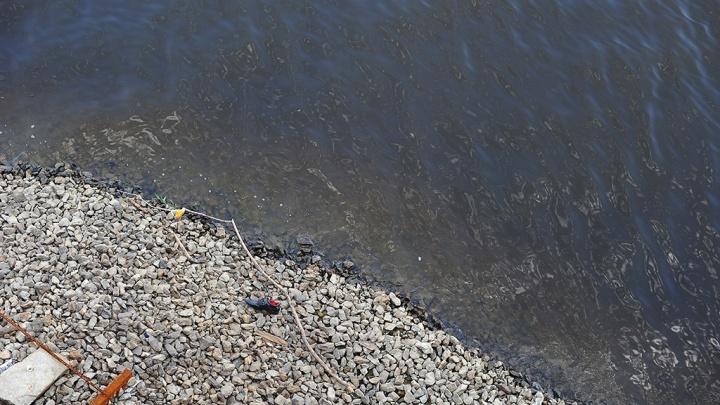 Тюменский дачник нашел в водоеме мертвого мужчину