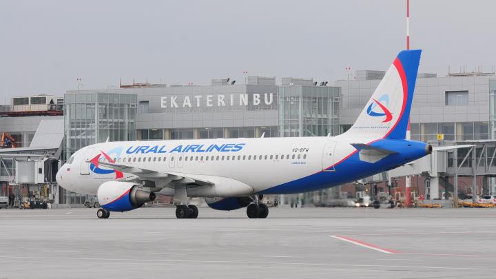 В Екатеринбурге вынужденно сел самолет из Краснодара, столкнувшийся с птицей на взлете