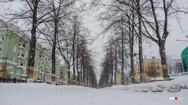 В Прикамье похолодает до -20 °С. Рассказываем о погоде на неделю