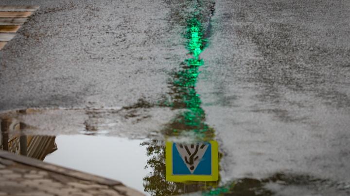 Дождливо и ветрено: какая погода ждет Ростов на этой неделе