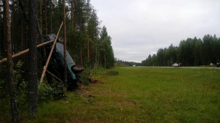 Застрял между соснами: в Холмогорском районе погиб бесправный водитель ВАЗа
