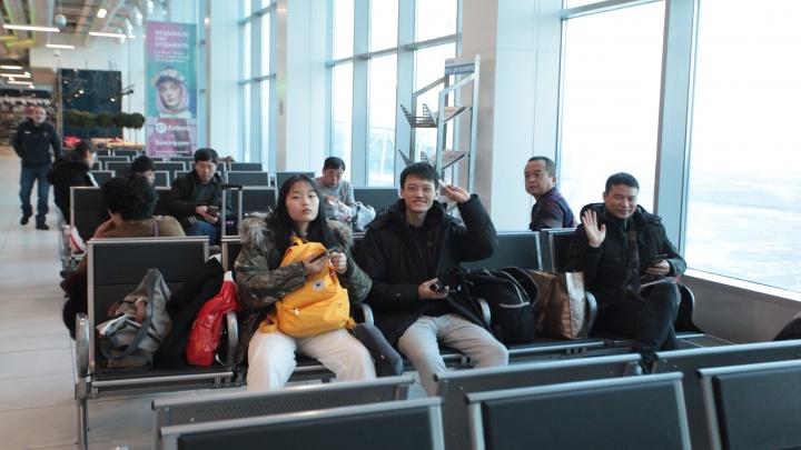 В аэропорту Толмачёво поставили 400 новых стульев с розетками