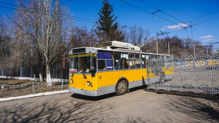 В День города на маршрут выпустят музыкальный троллейбус с фотографиями Летова и 25/17