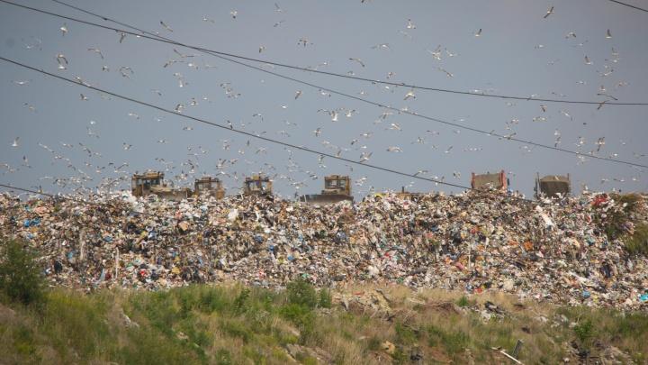 «Хочу там развлекательный центр»: министр экологии рассказал, во что превратят челябинскую свалку